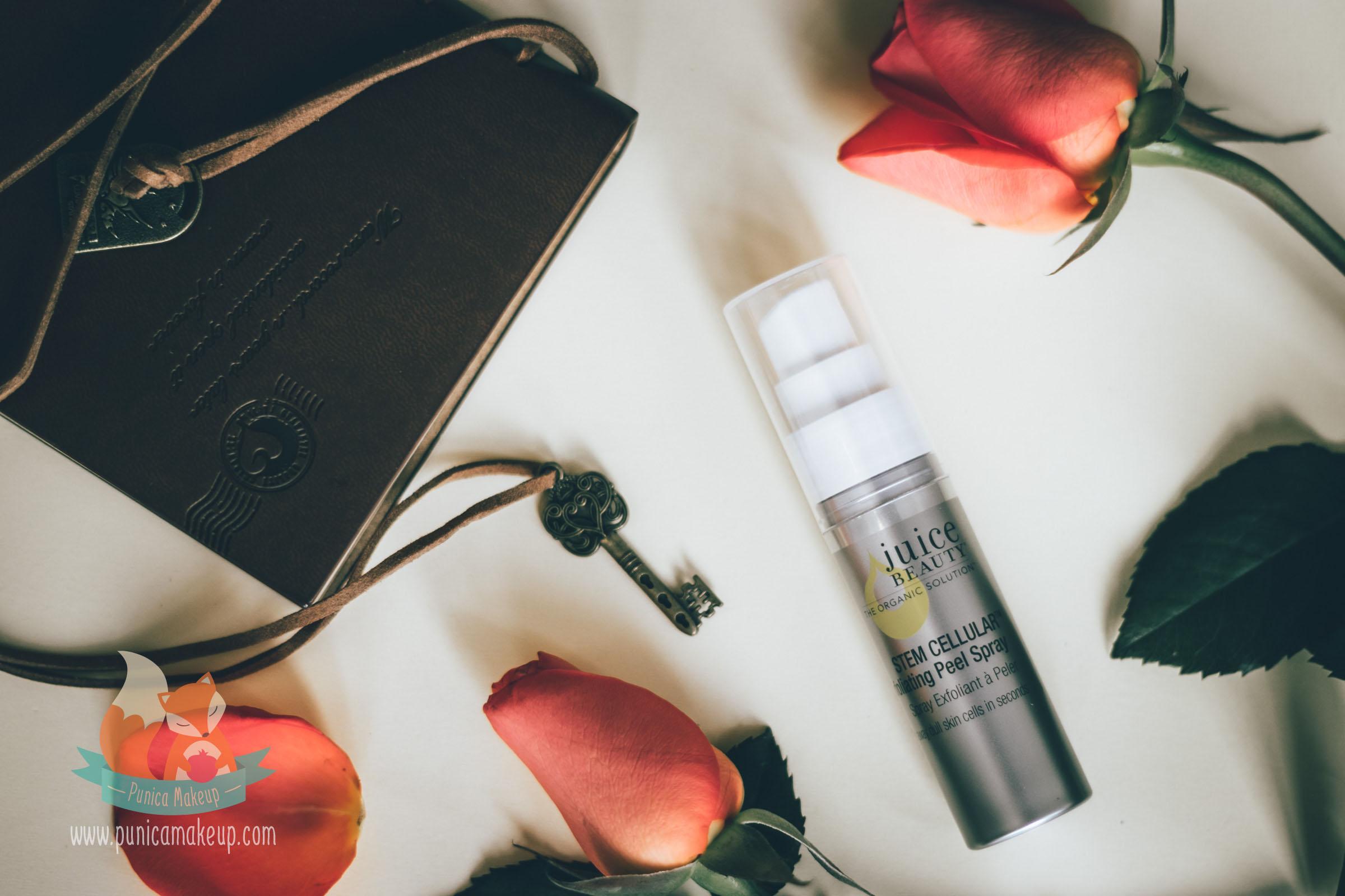Stem Cellular Exfoliating Peel Spray by Juice Beauty #6