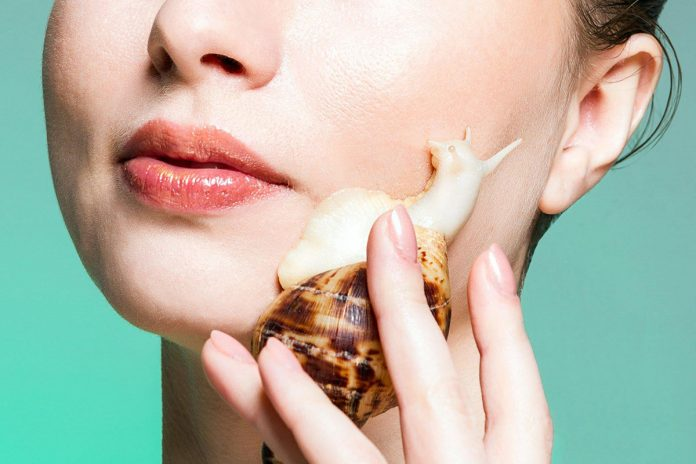 Snail Slime in skincare to decrease aging signs